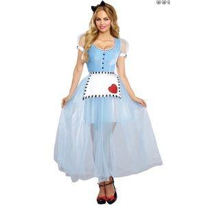 Dreamgirl Alice In Wonderland Costume sz. M